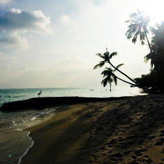 Maldives on a budget   seefoodplay.com